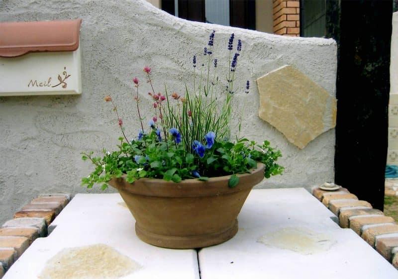 ザ・カントリー|GARDENさくら 兵庫県神戸市西区の女性建築士が造る庭・ガーデニング・外構・エクステリア