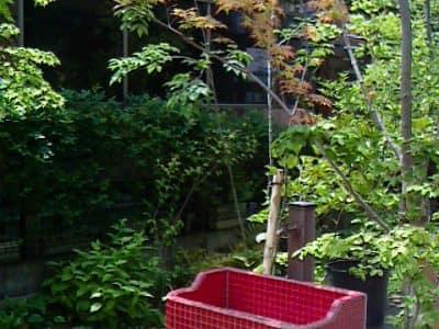 西神南ログハウスの庭- 女性建築士が造る庭・ガーデニング・外構 神戸|GARDENさくら
