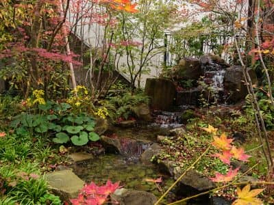 加古川 粟津の森- 女性建築士が造る庭・ガーデニング・外構 神戸|ガーデンさくら〜にわさくら〜